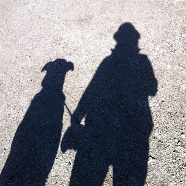 1st 2014 Selfie! #dogsofinstagram #dogs #trailwalking–posted by crishabell on Instagram