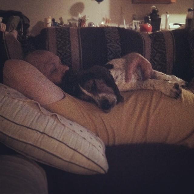 Sleepy baby on New Year's Eve #waffles #austintx #dogsofinstagram–posted by karensinaustin on Instagram