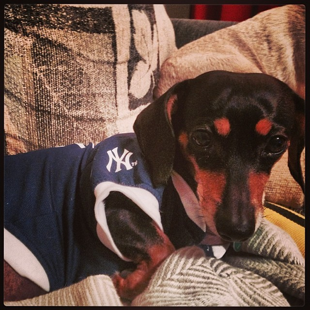 My bitch #yankees–posted by lesman on Instagram