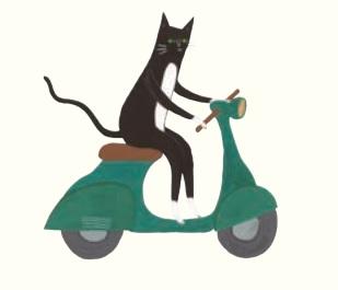 William the cat detective!