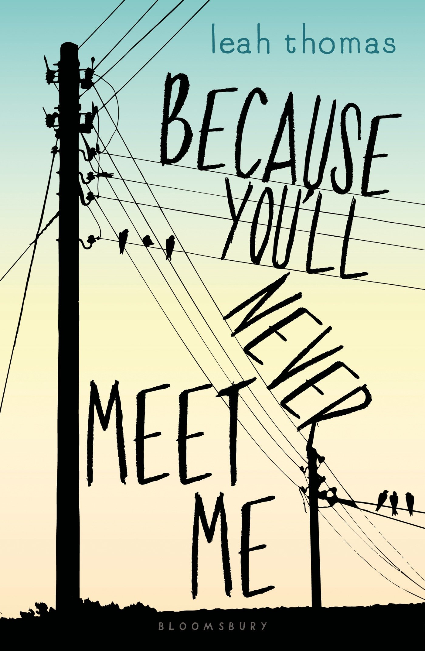 Because You'll Never Meet Me , by Leah Thomas