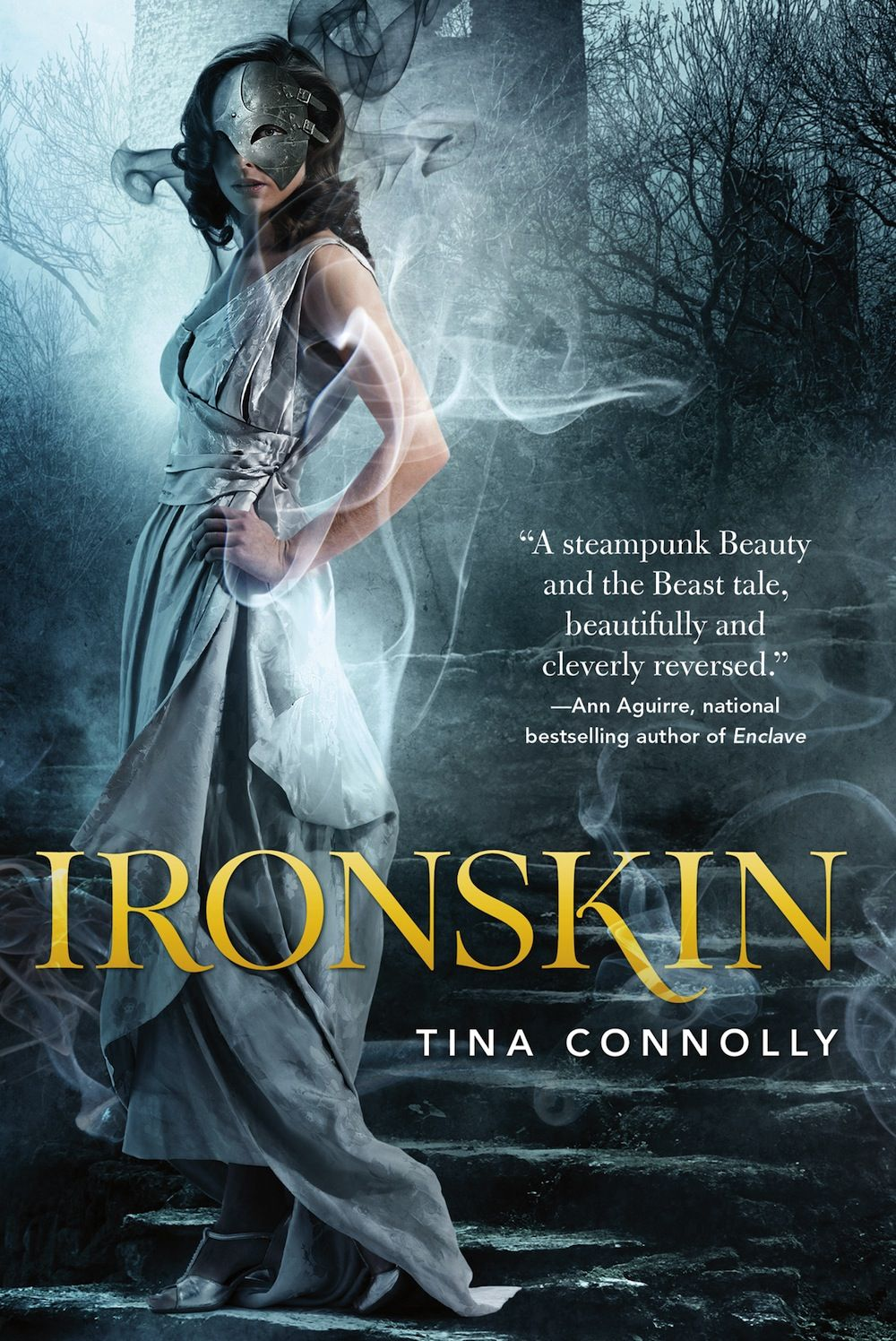 Ironskin , by Tina Connolly