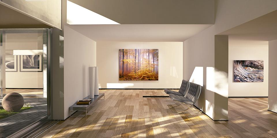 banner_interior6.jpg