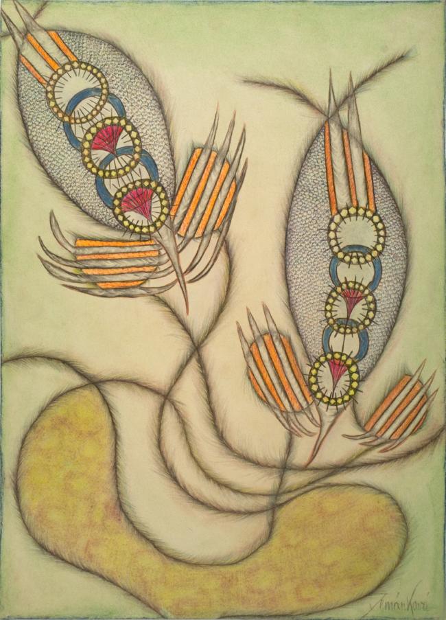 Anna Zemánková Untitled, early 1970's Pastel, ballpoint 24.41 x 17.13 inches / 62 x 43.5 cm / AZe 479