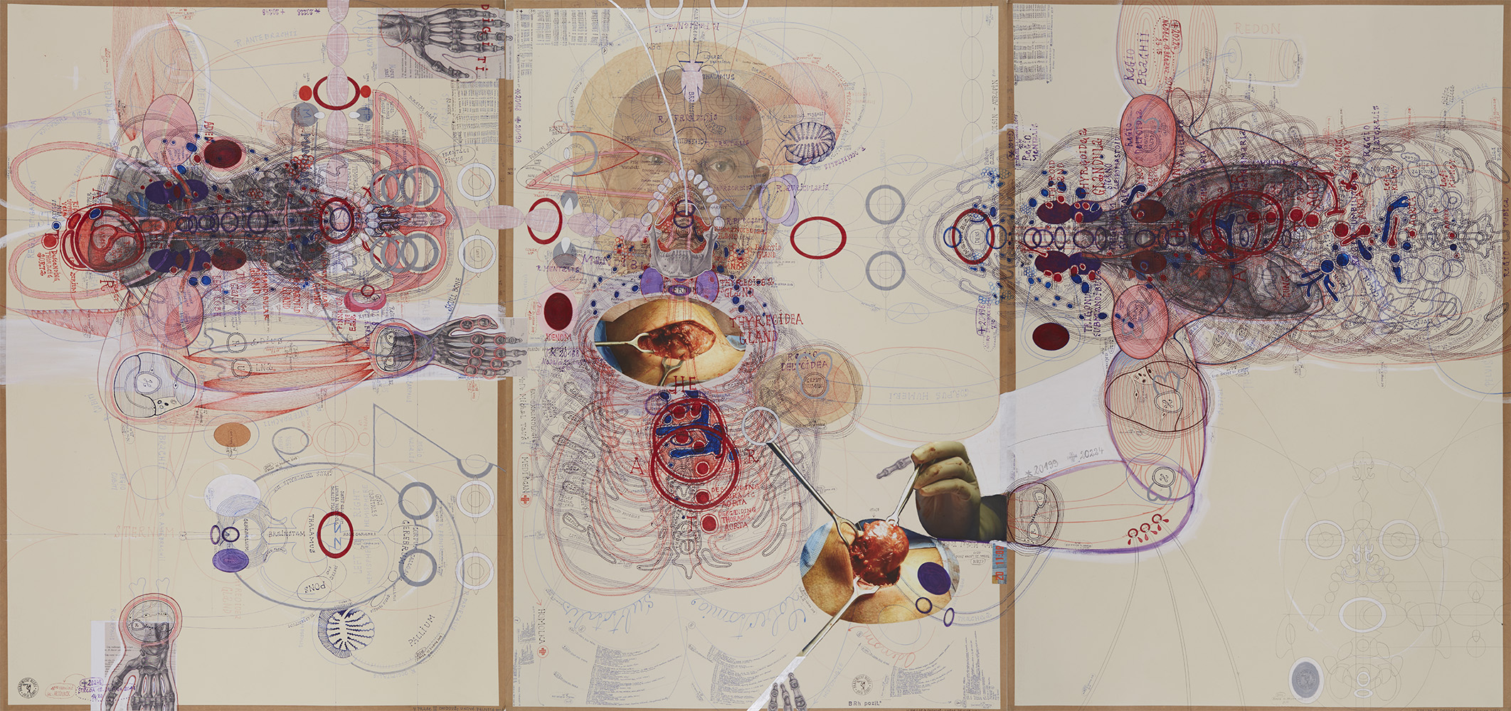 Luboš Plný, Lobectomia Subtotalis, 2017, Ink, acrylic, collage on paper, 39.37 x 83.68 inches, 100 x 210 cm, LuP 62