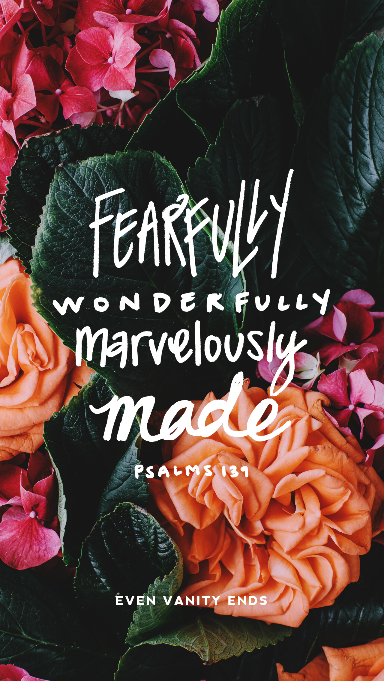 even vanity ends fearfully wonderfully free download.jpg