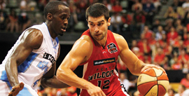 SEE THE PERTH WILDCATS IN 2017