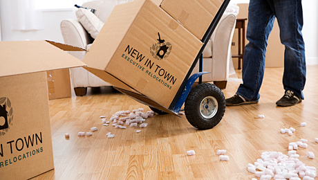We will arrange free competitive MOVING QUOTES.