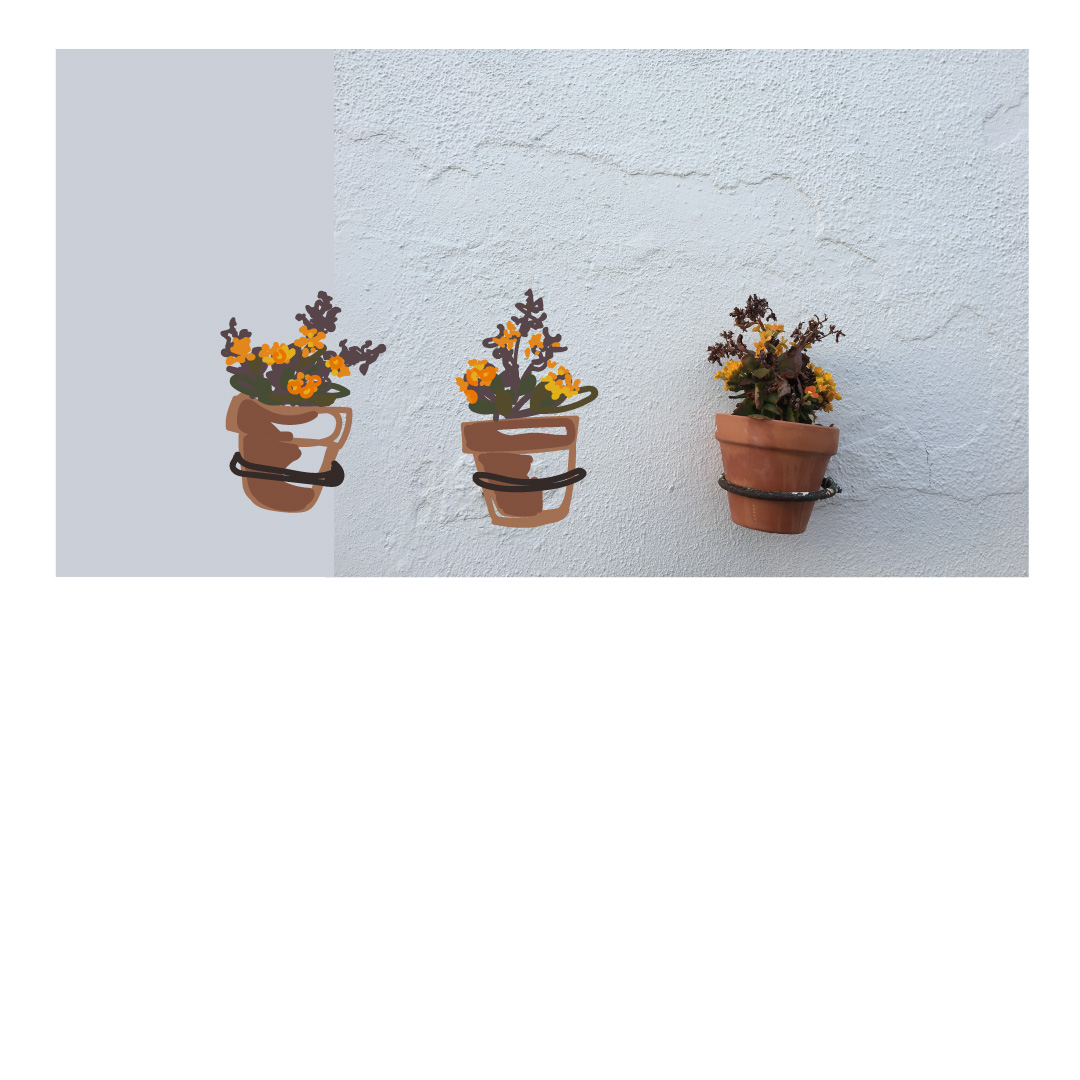 pots-floral-illustration-digital.jpg