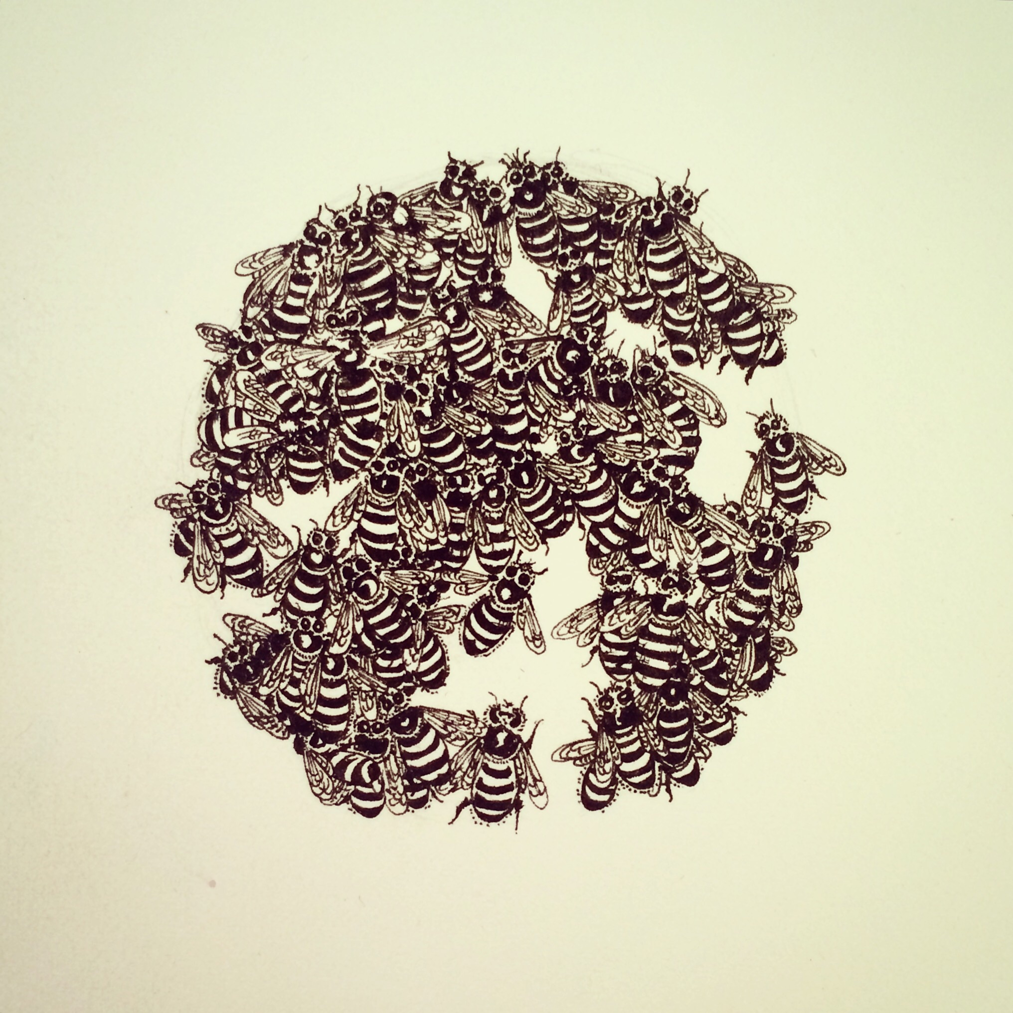 Becoming . Ink Drawing of a Honeybee Swarm by Crystal Hartman  *Prints Available early April, 2015  Image Copyright Crystal Hartman, 2015