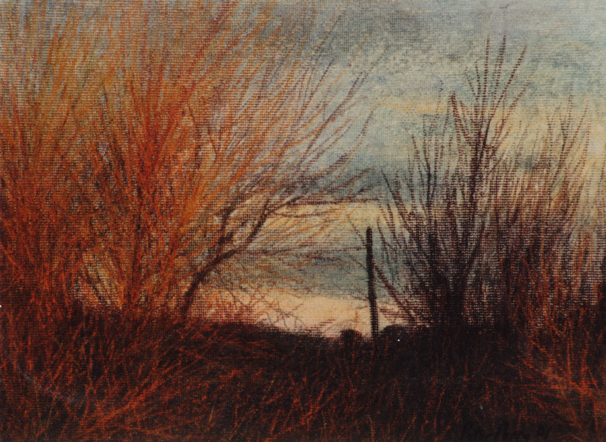Red Willows, Kemyel