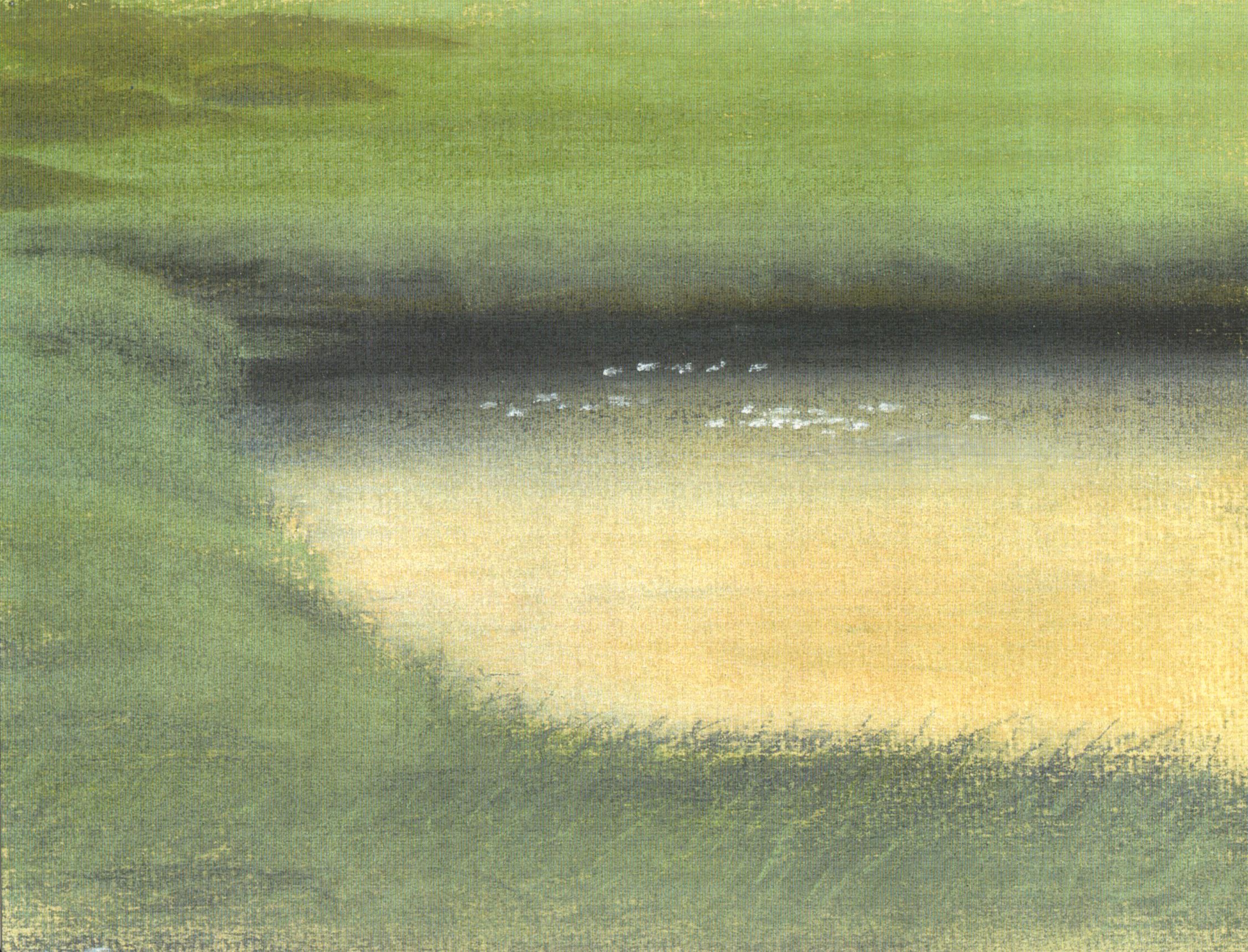 Marazion marshes with gulls I