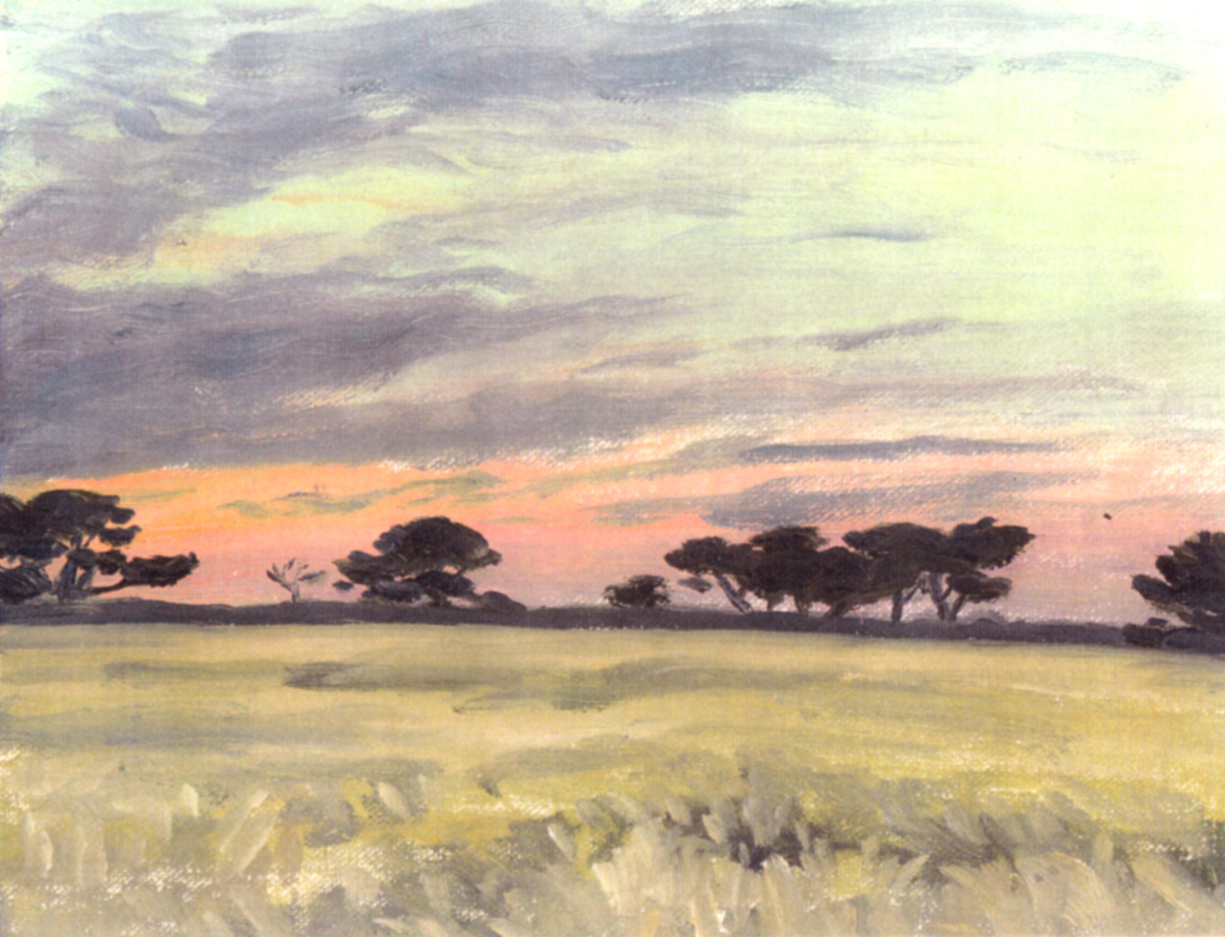 Monterey pines, Paul