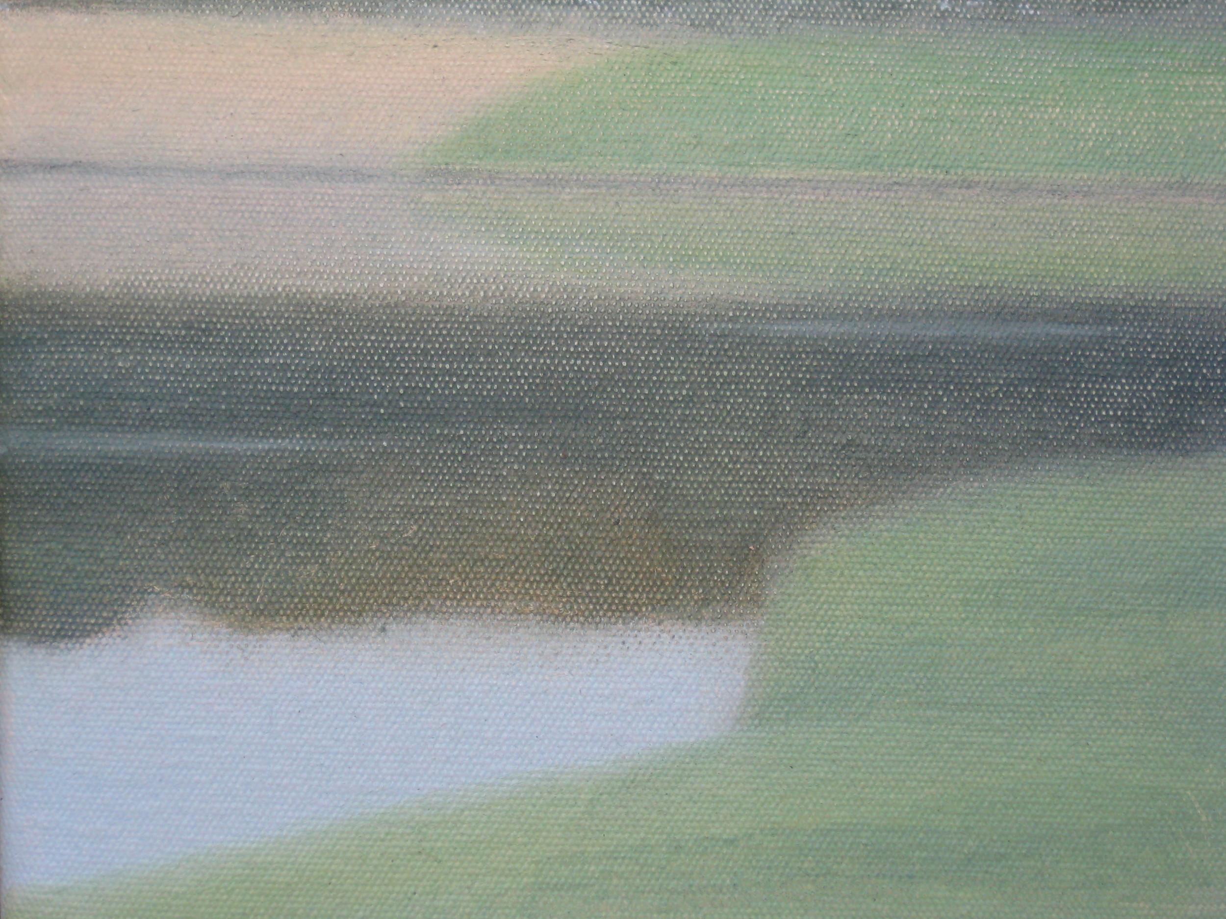 Marazion marsh I