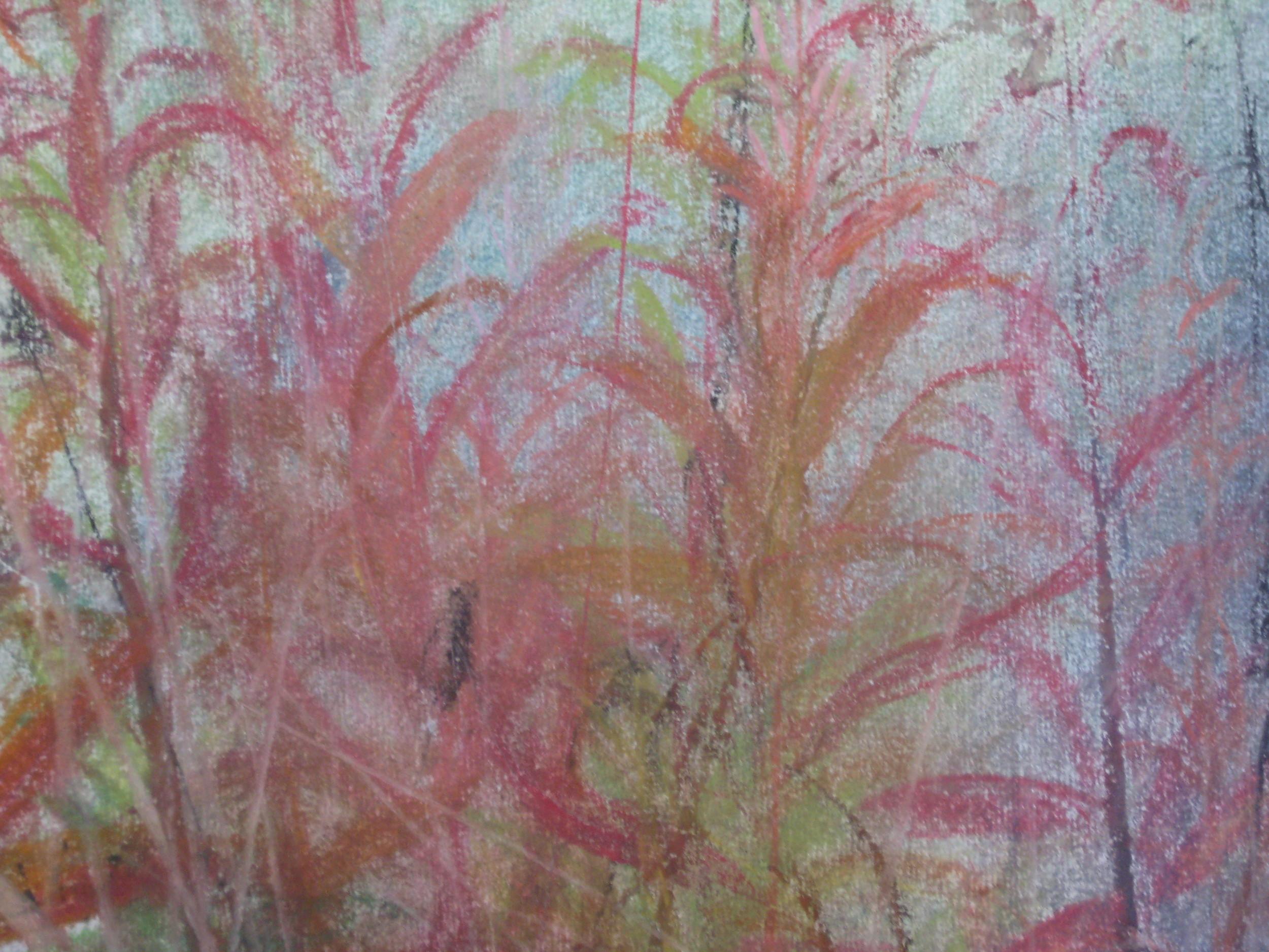 Rosebay willow herb II
