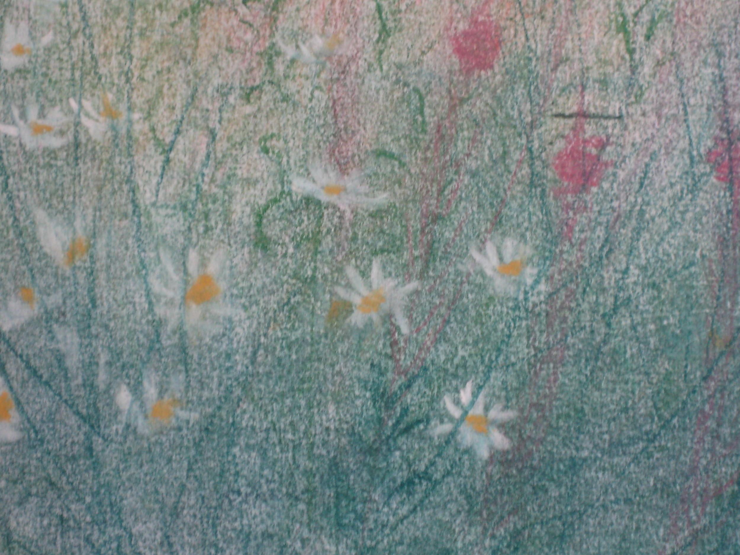 Rosebay willow herb and daisy