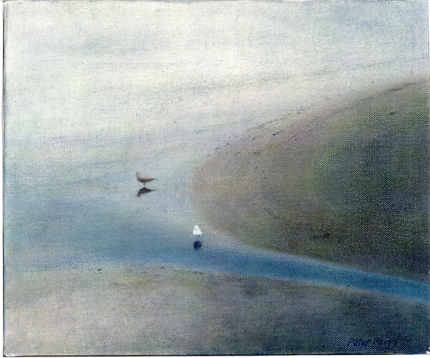Ebb tide with gulls, Newlyn