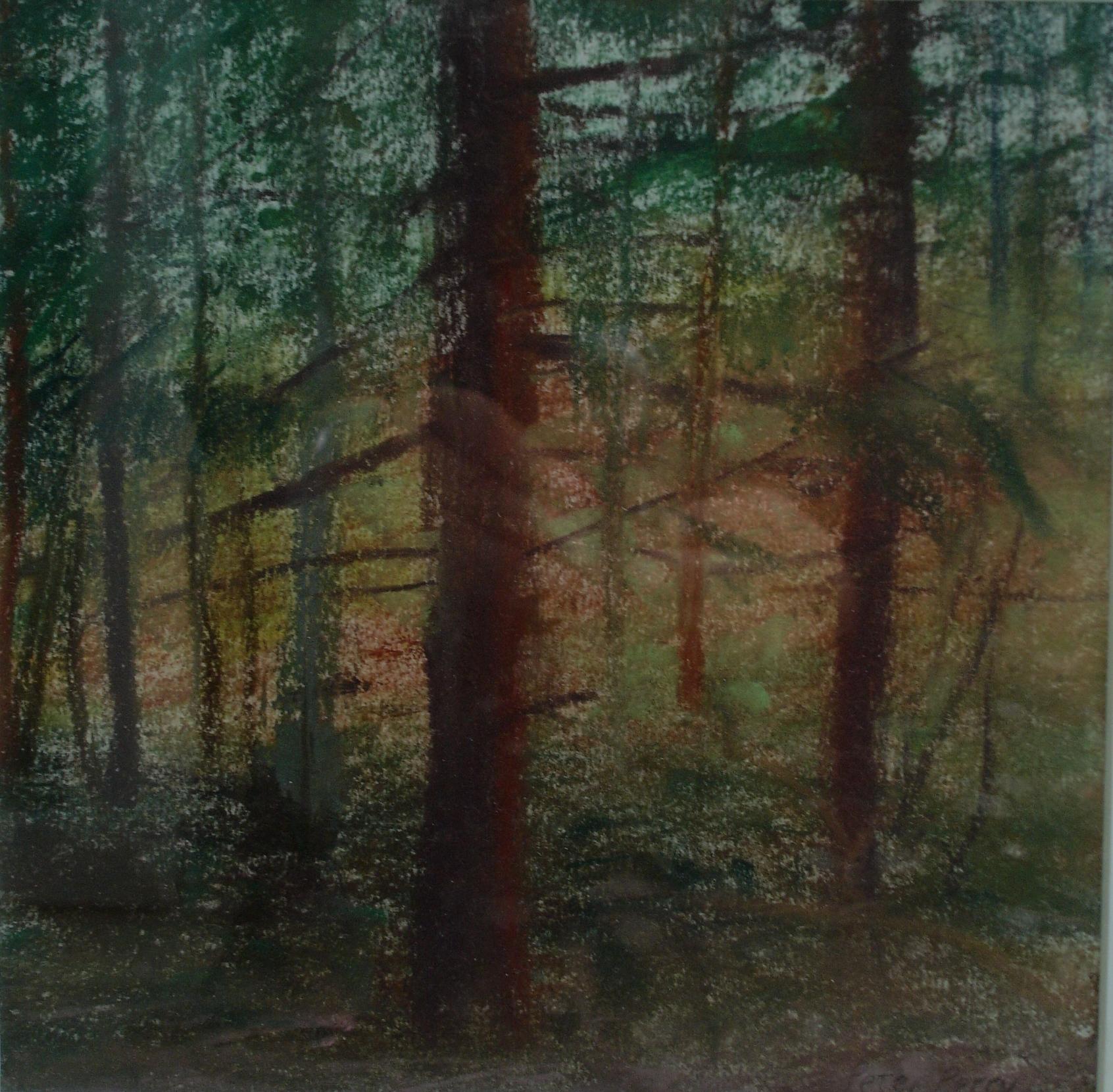 Redwoods, Trelowarren