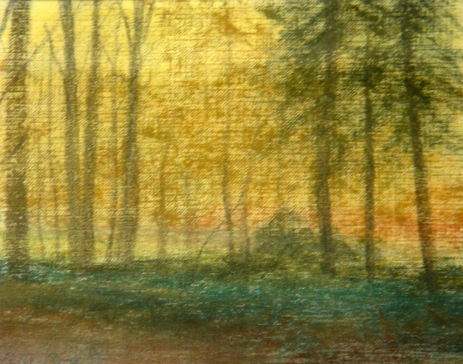 Woodlands, autumn, Forges les Eaux, Normandy
