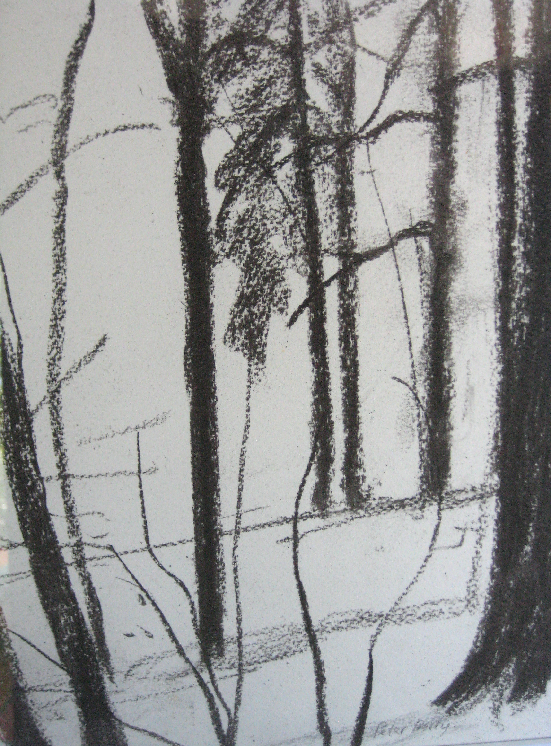 TREES, WINTER III