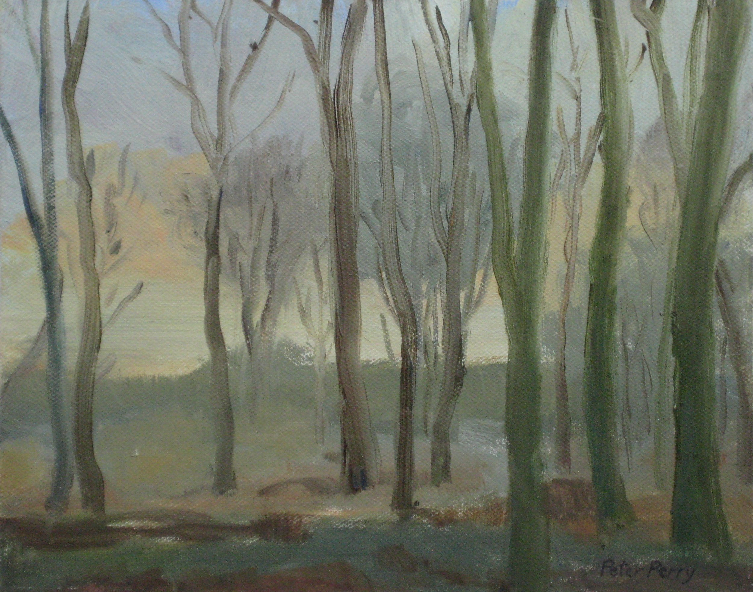 TREVELLOE WOOD, WINTER II