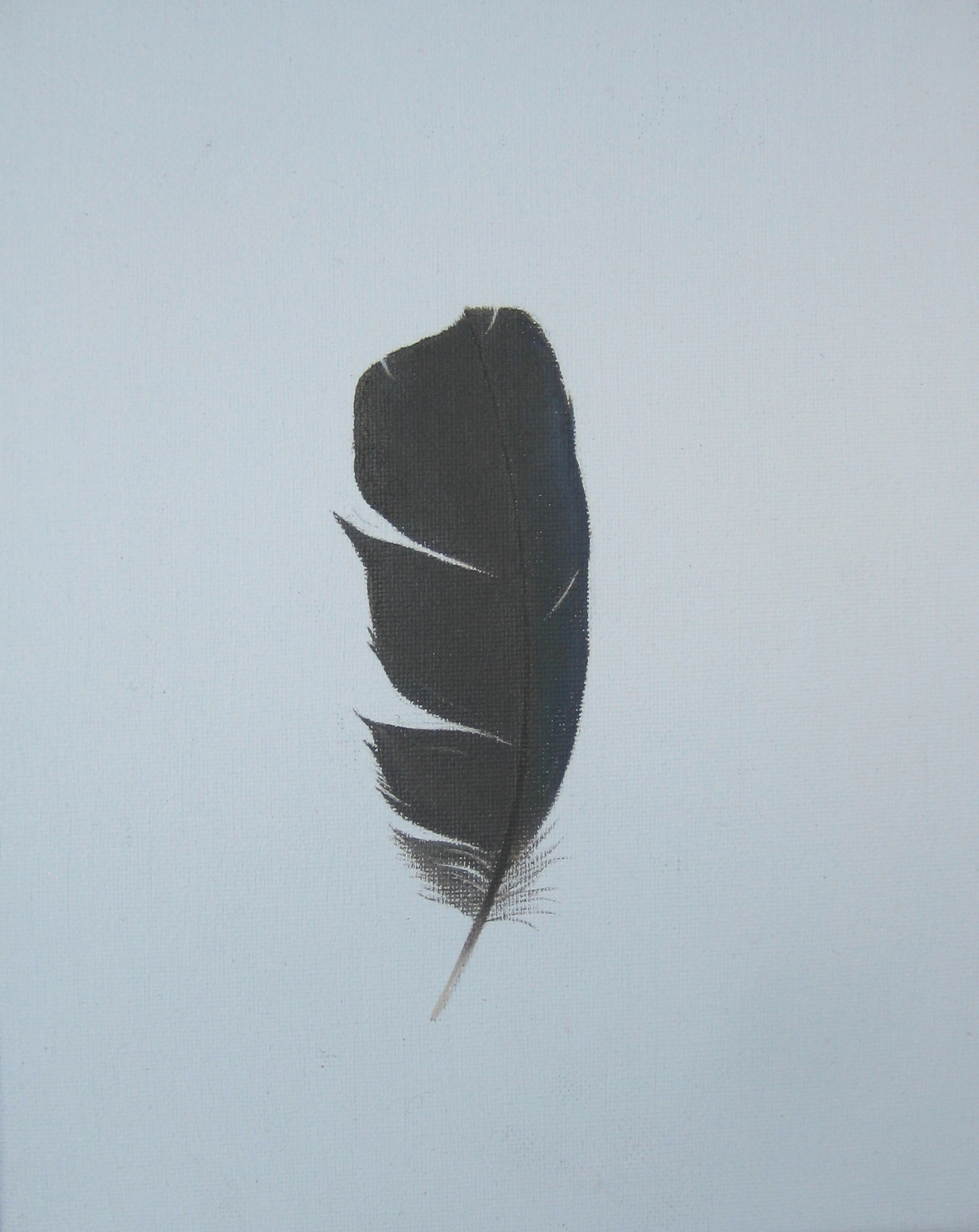 RUFFLED IRIDESCENT FEATHER