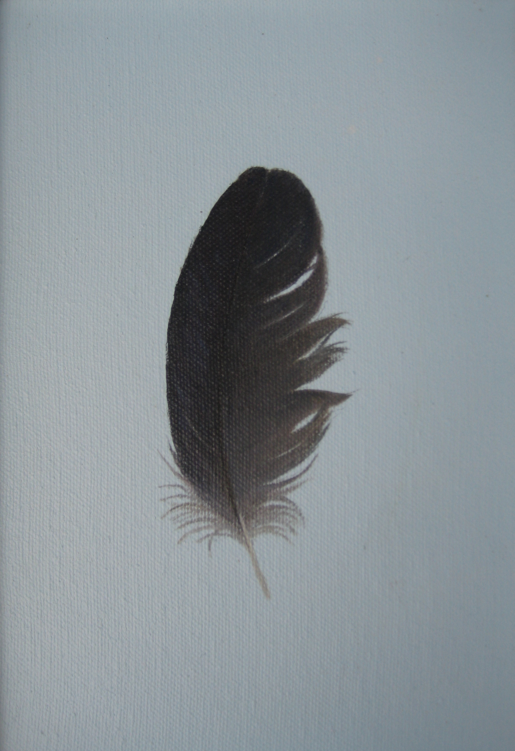 RUFFLED BLACK FEATHER