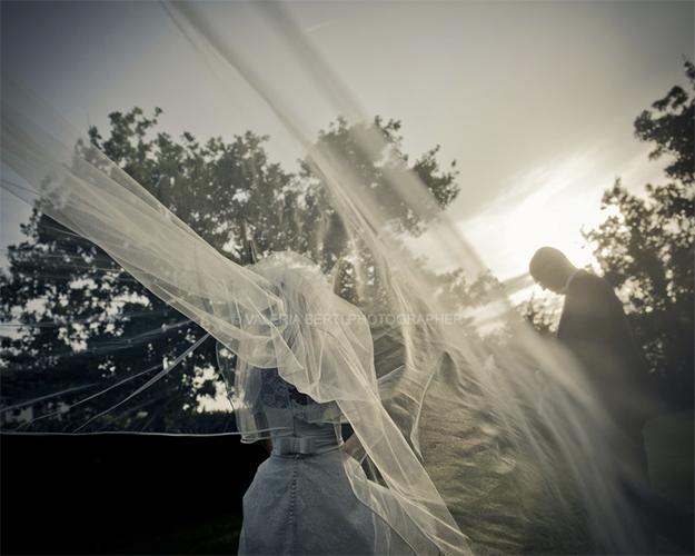 best wedding planner in Venice