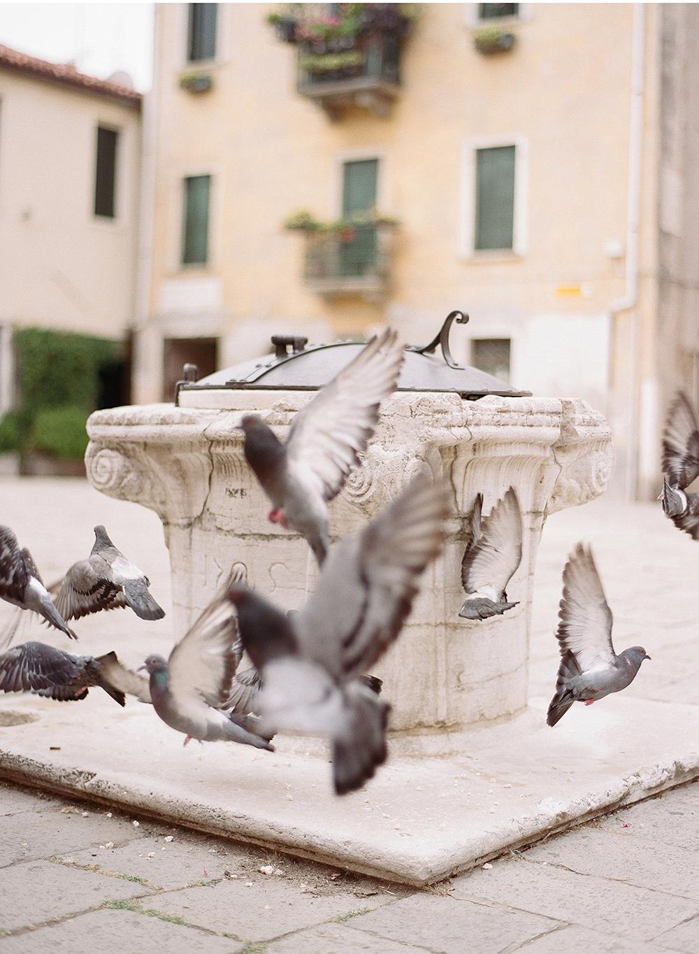 003_Venice.jpg