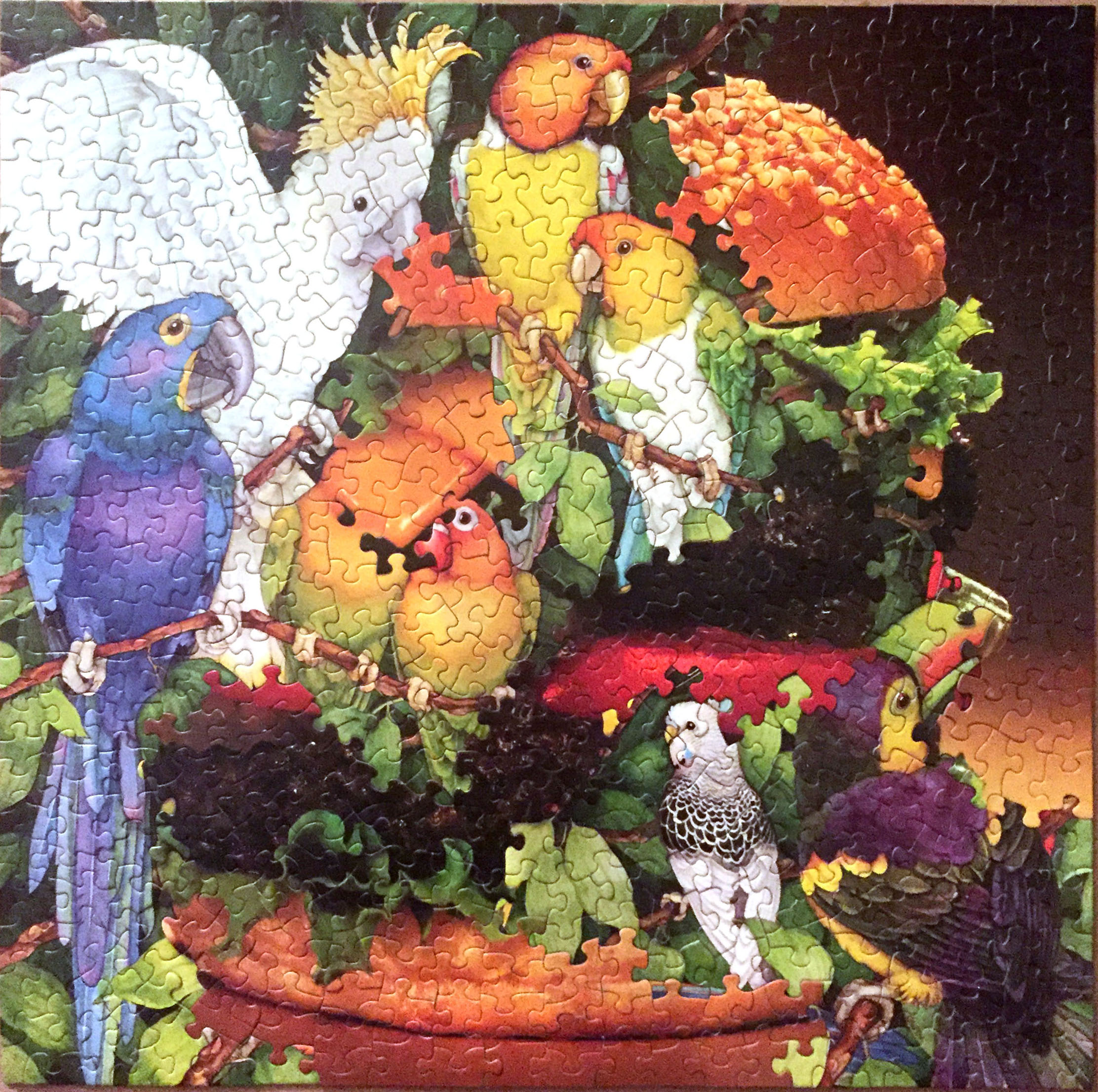 Parrot Burger Party, B-Side, jigsaw puzzle collage, vintage jigsaw puzzles