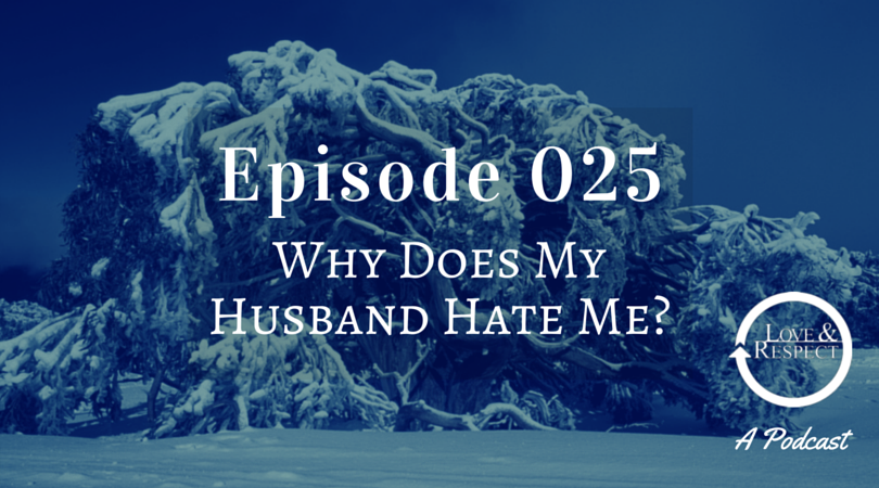 Episode 025 - Why Does My Husband Hate Me?.png