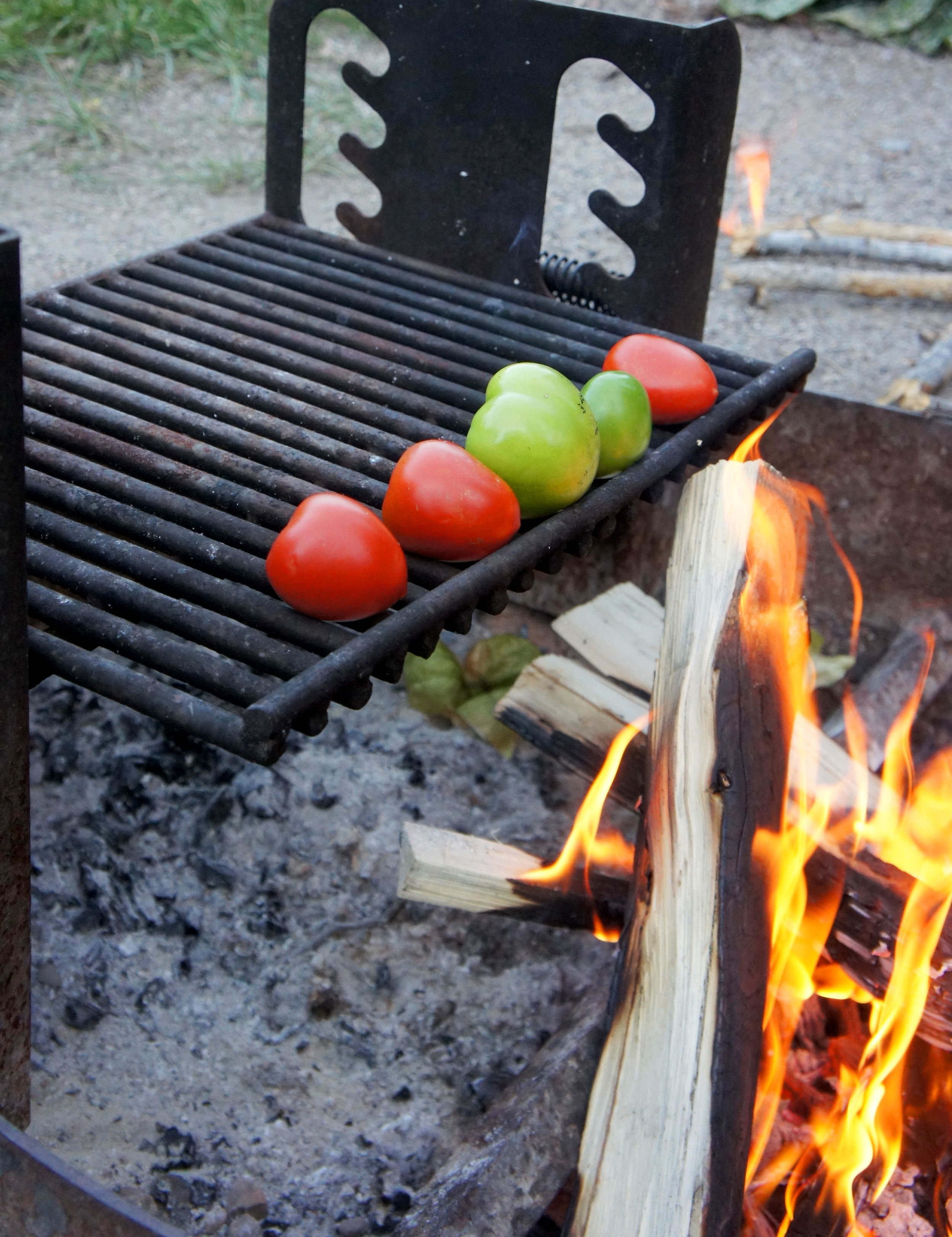 Tips for Paleo Camping