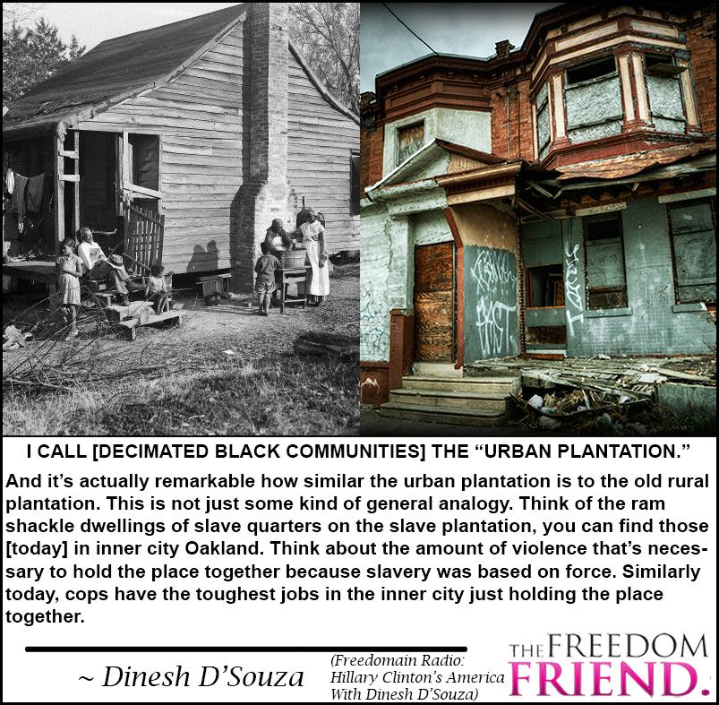 urban-plantation.jpg