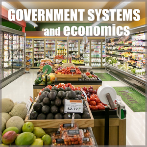 Government Systems and Economics