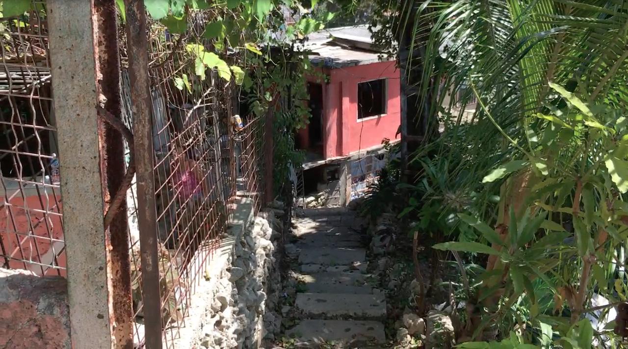 Narrow Walkway Pink House.jpg