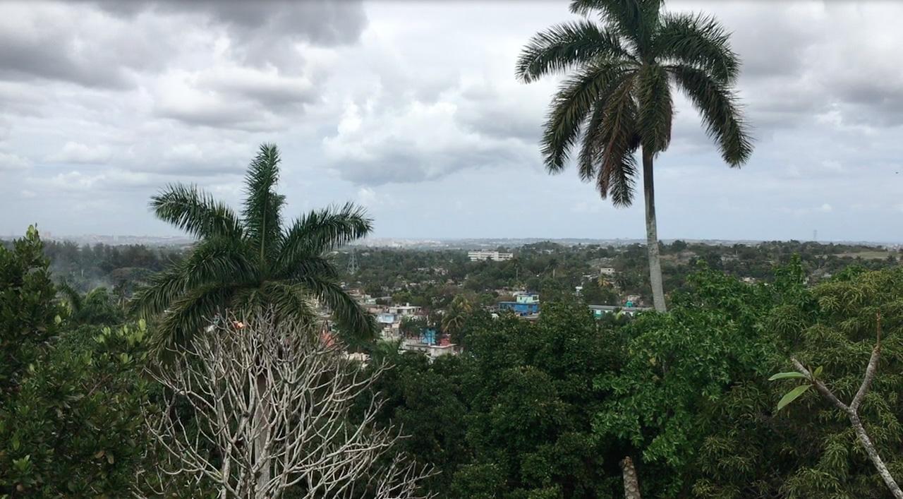 View of Havana.jpg
