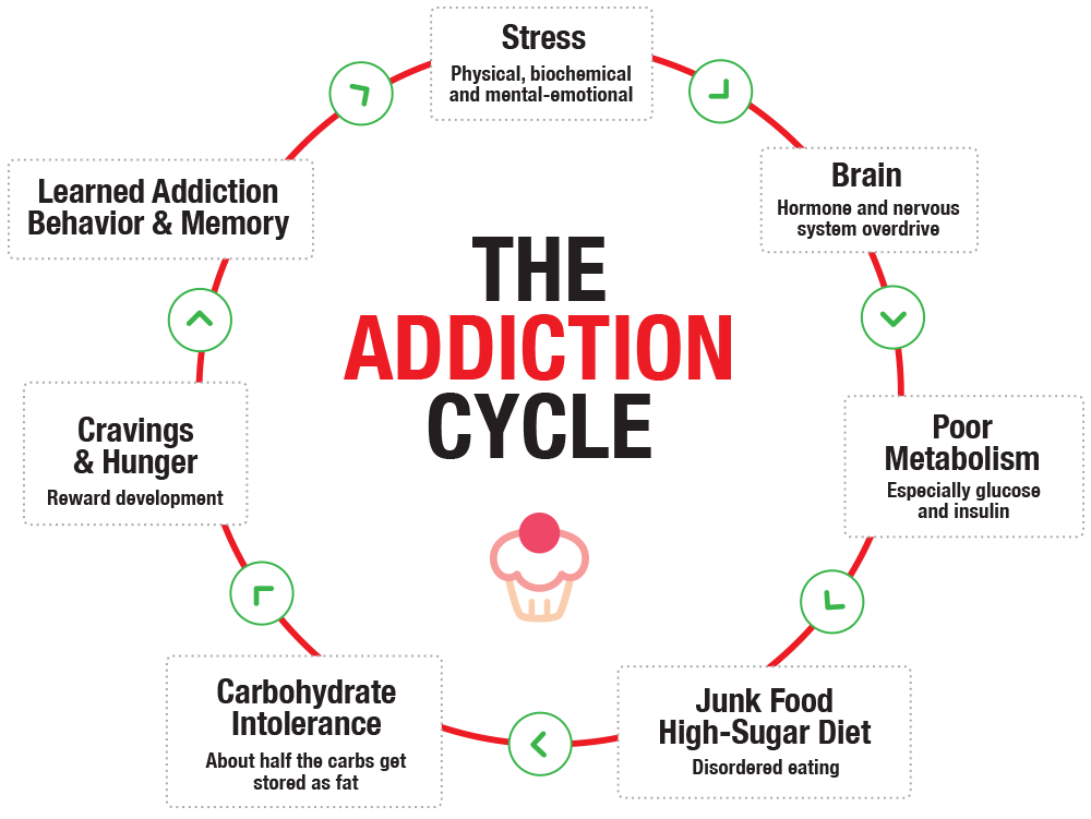 To break the cycle, we must understand how our biochemistry imbalances are fueling the cravings that lead to the addiction relapse.