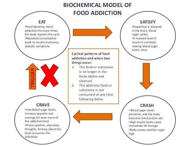biochemical model of food addiction