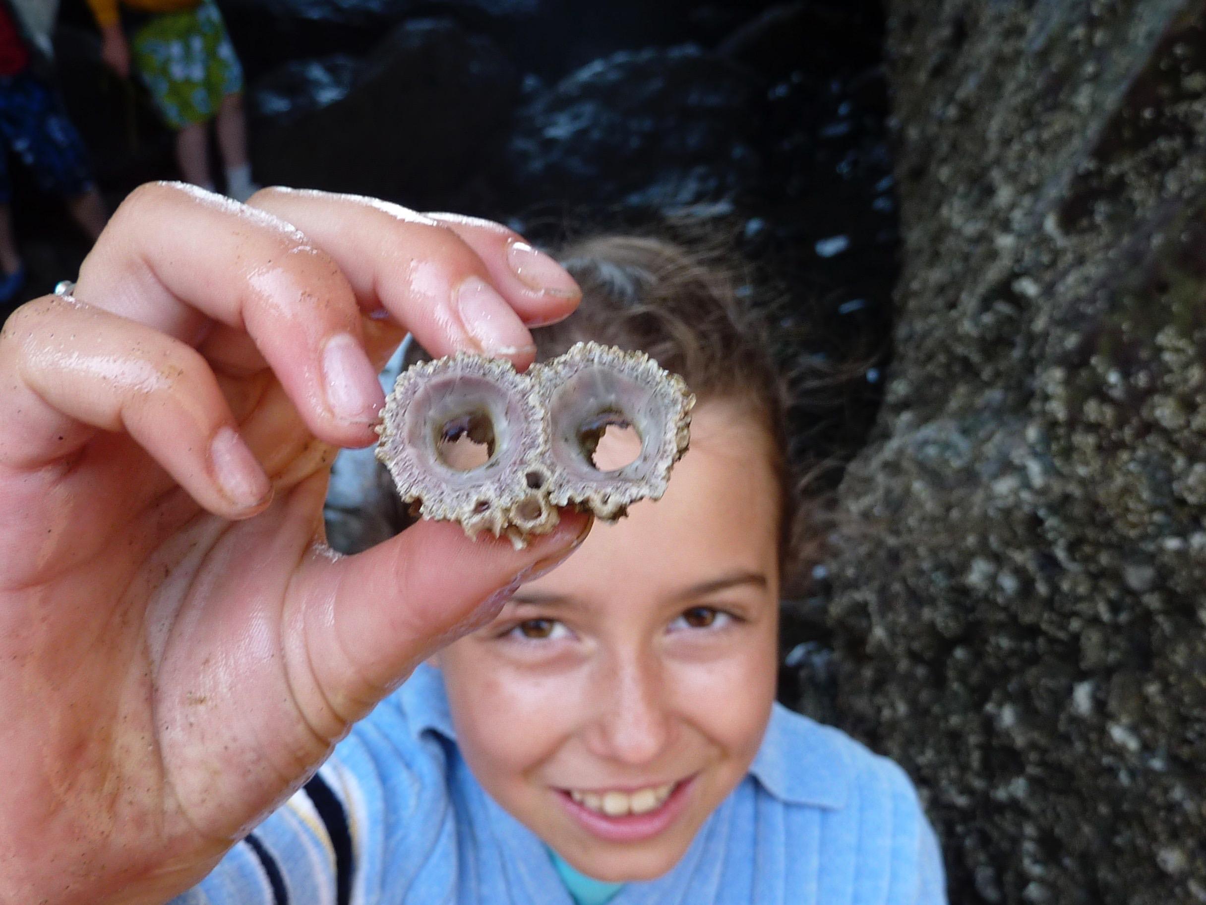 Exporing Oregon Tidepools,2009