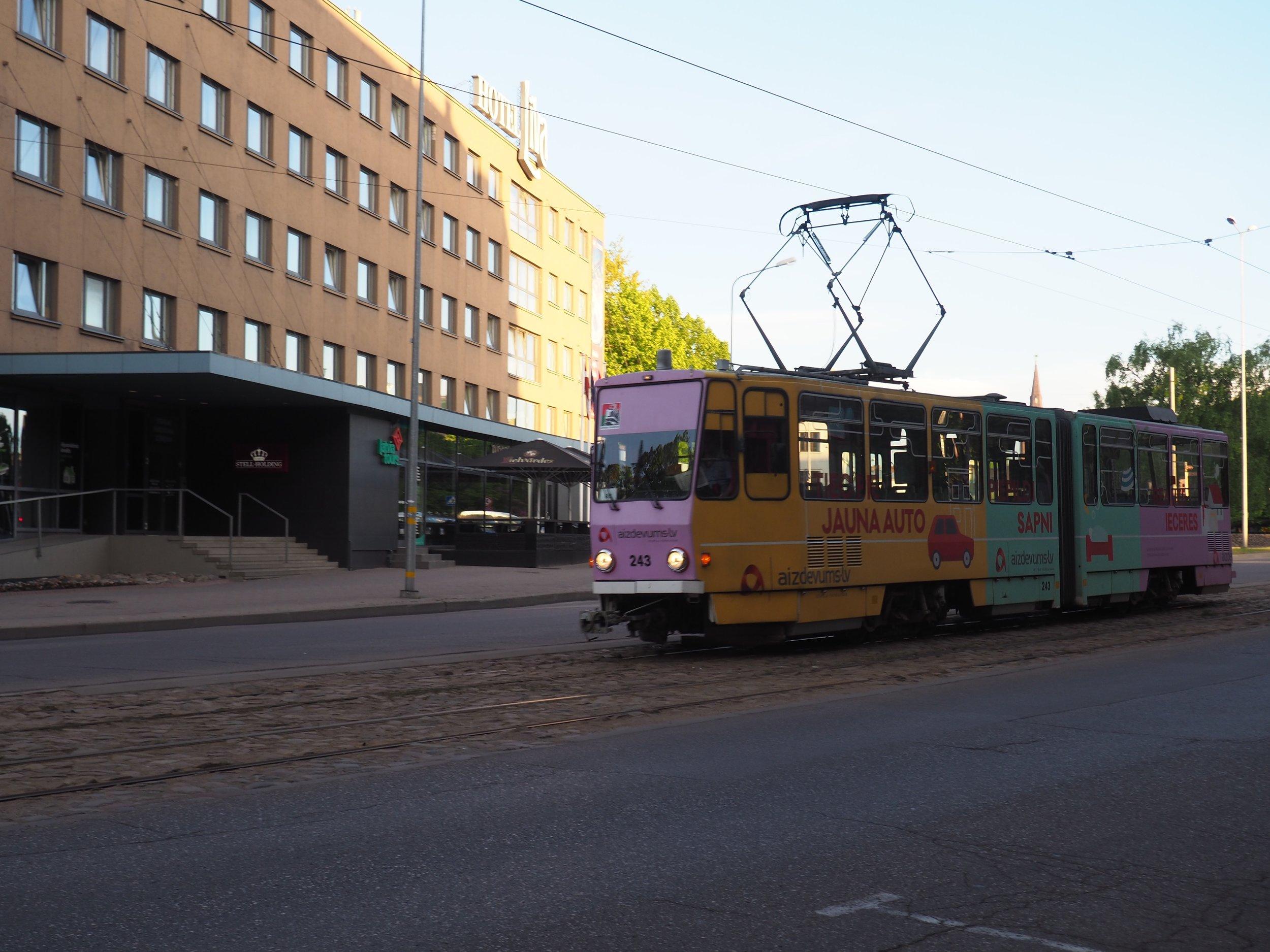 P1010074.jpg