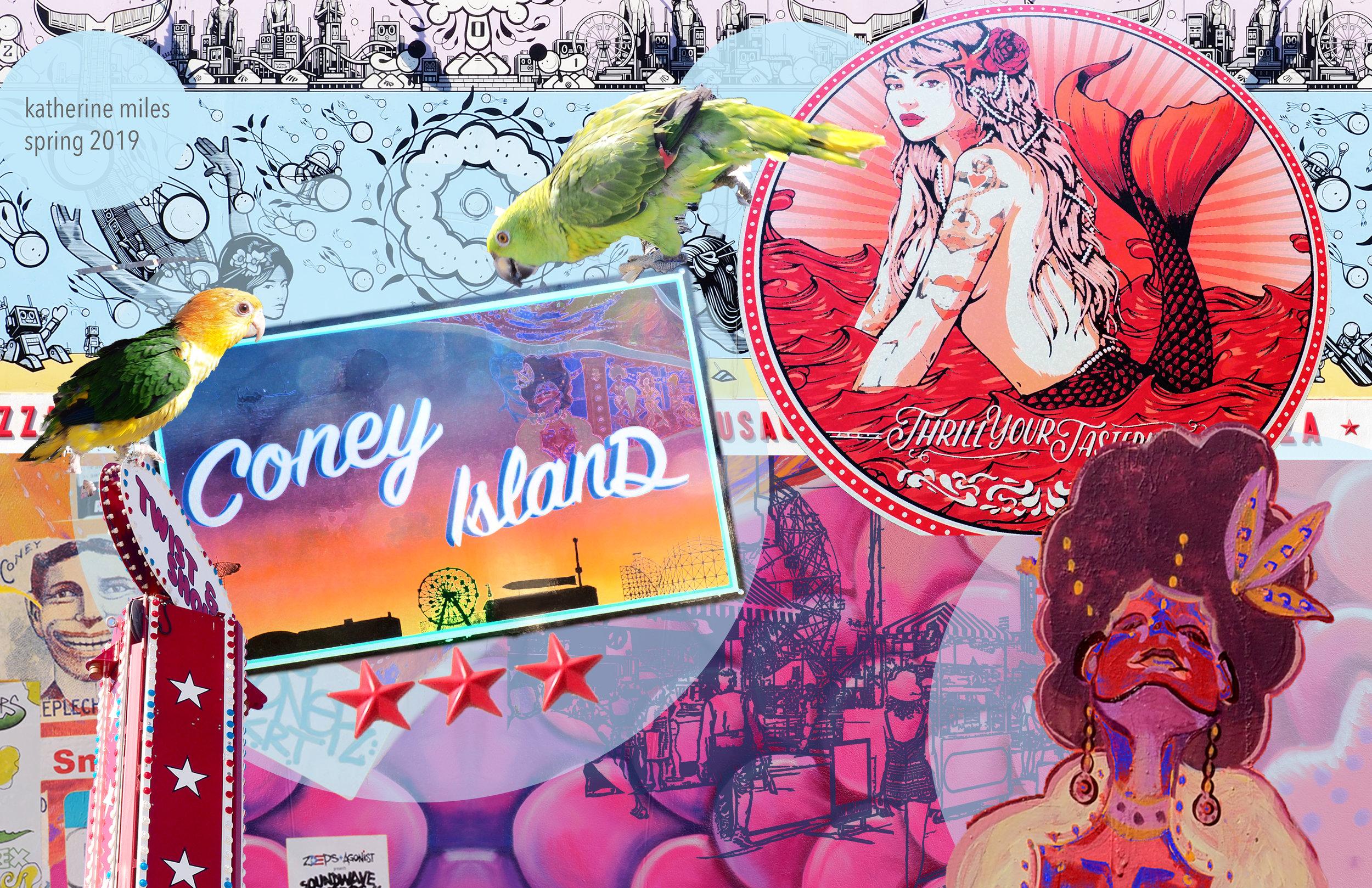 fin_coney landscape mood board_edited-1.jpg