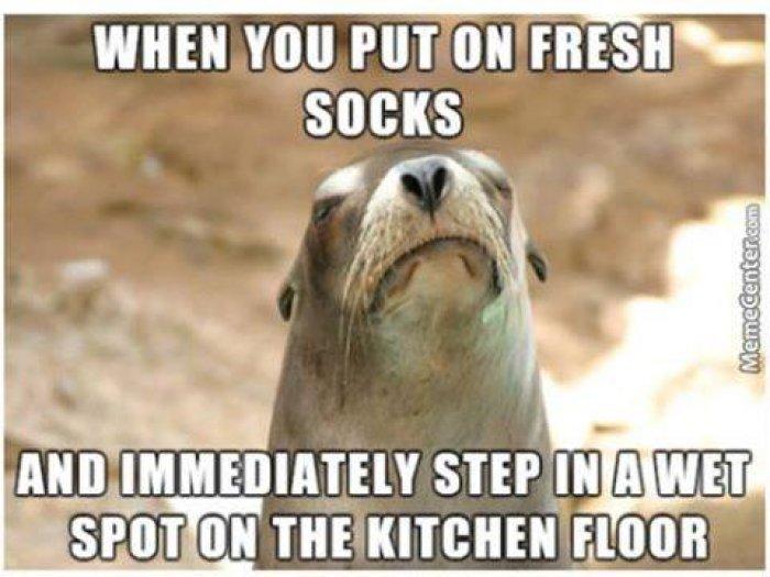 When-you-put-on-fresh-socks-meme.jpg