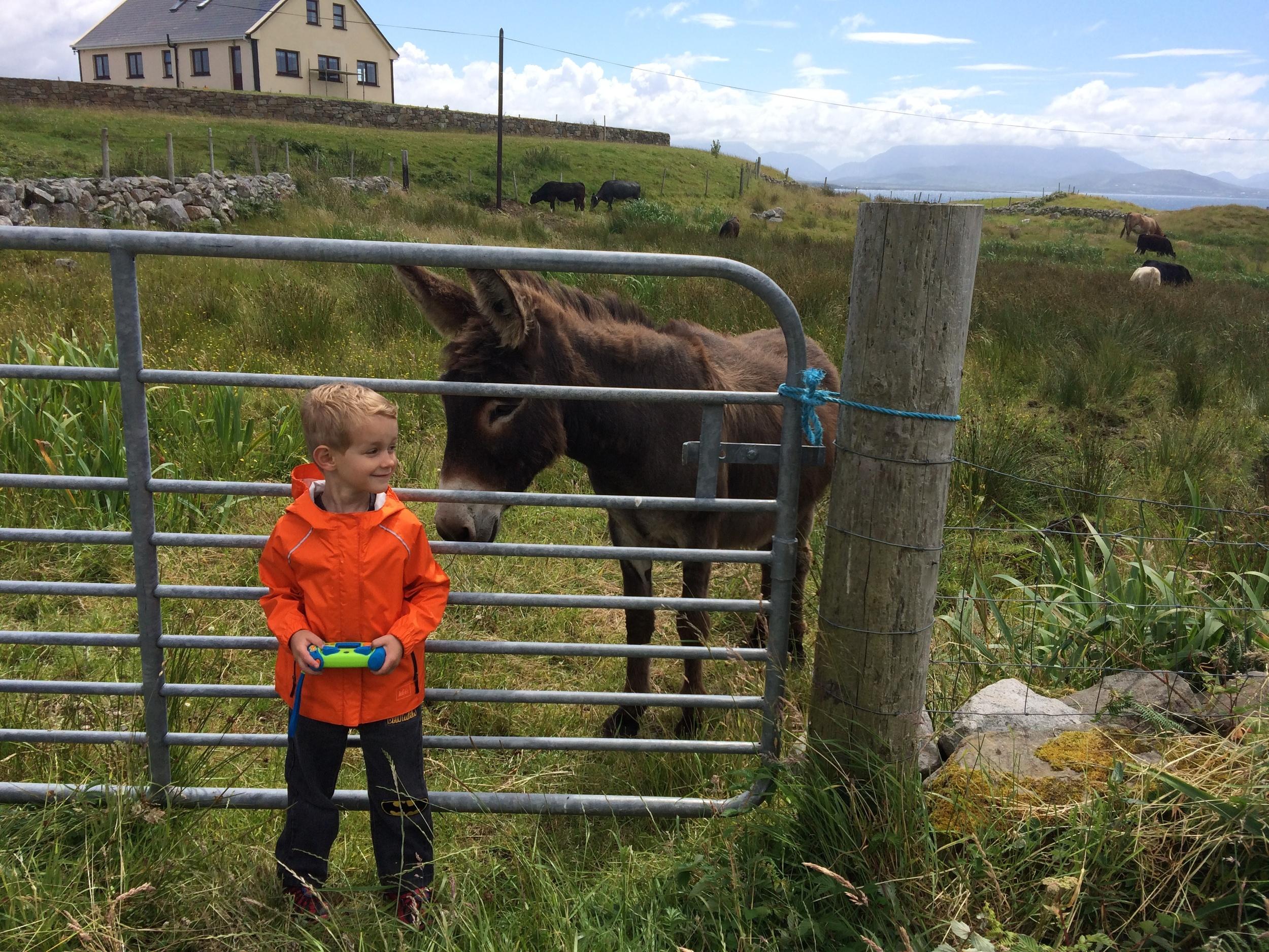 Kian and the sweet donkey