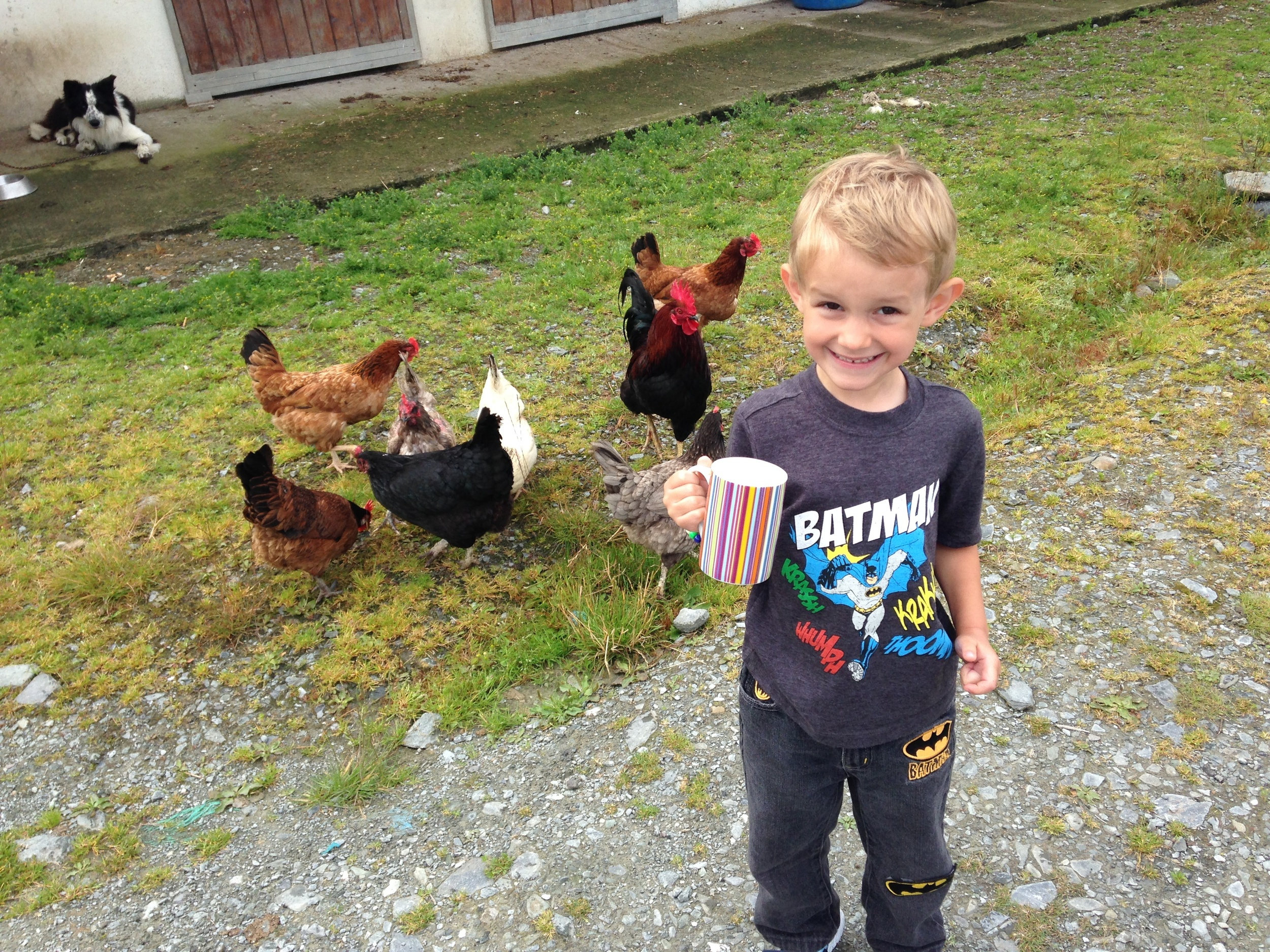 Kian about to feed the soaked up bread to the chickens