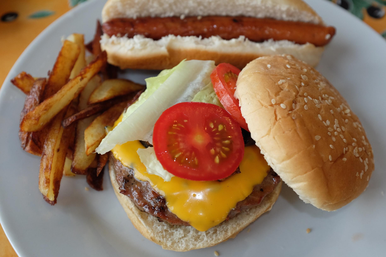 Cheeseburger, hot dog, and homemade french fries :)