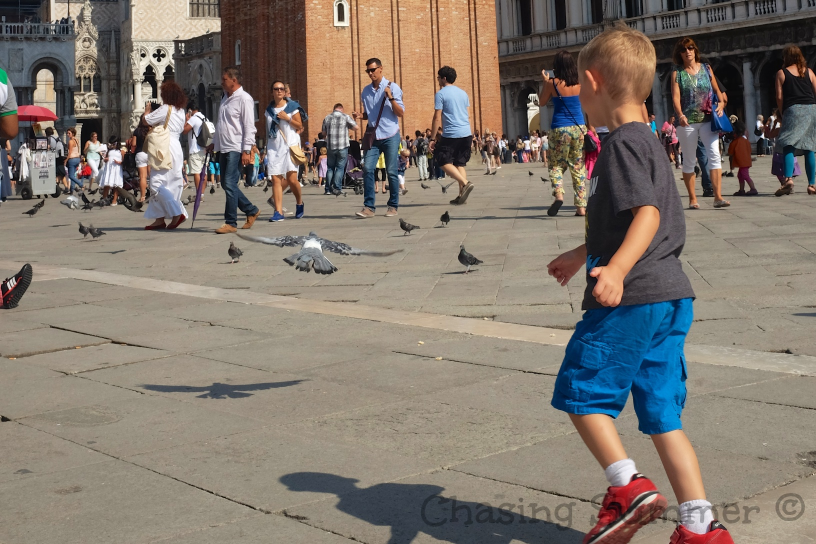 Kian chasing after the pigeons