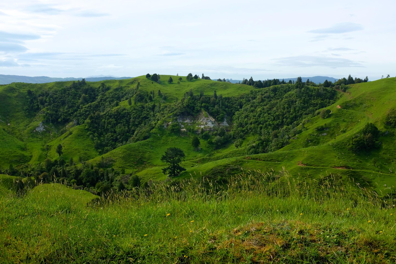 Beautiful Scenery from Kawhia to Waitomo