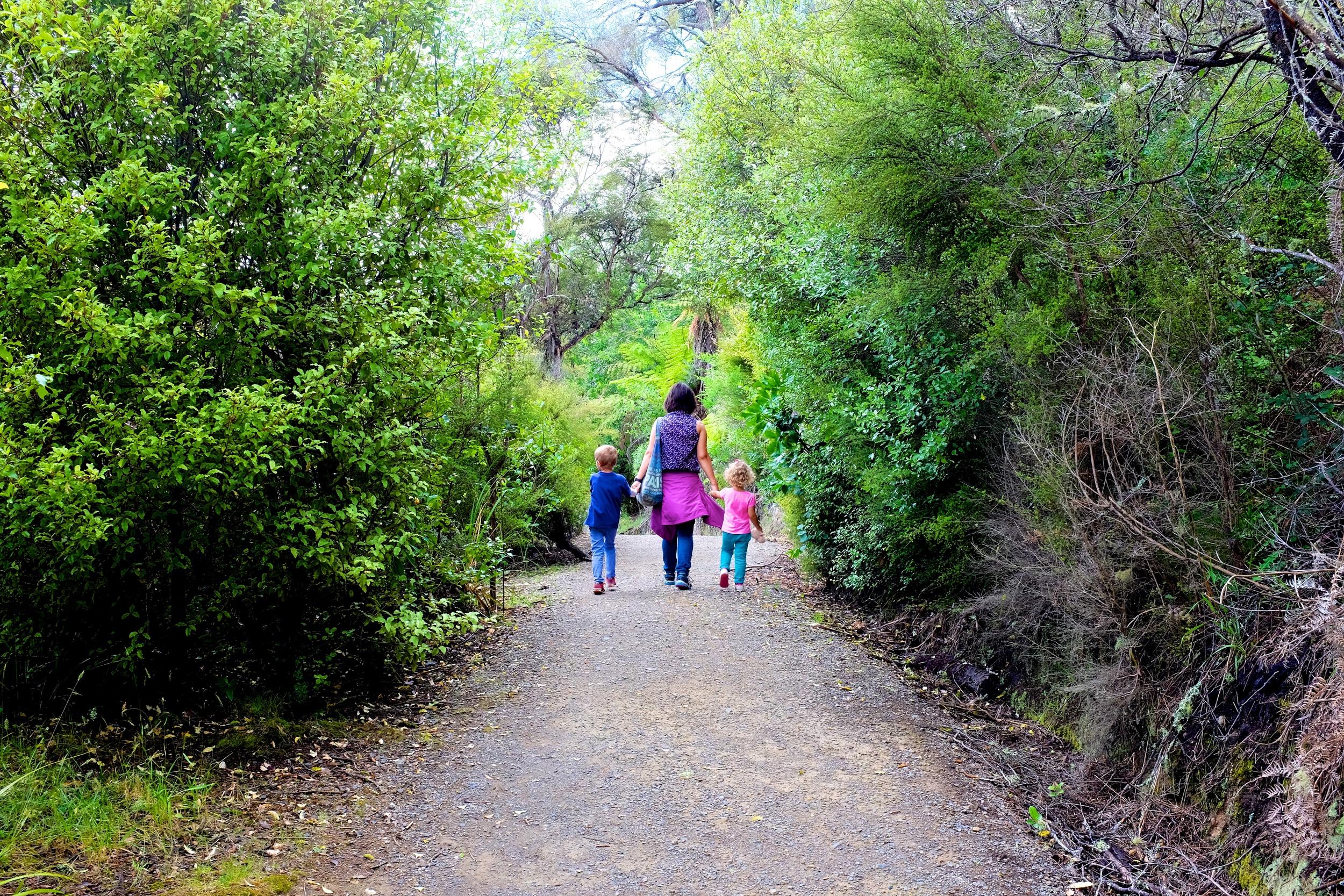 Hike to Huka Falls
