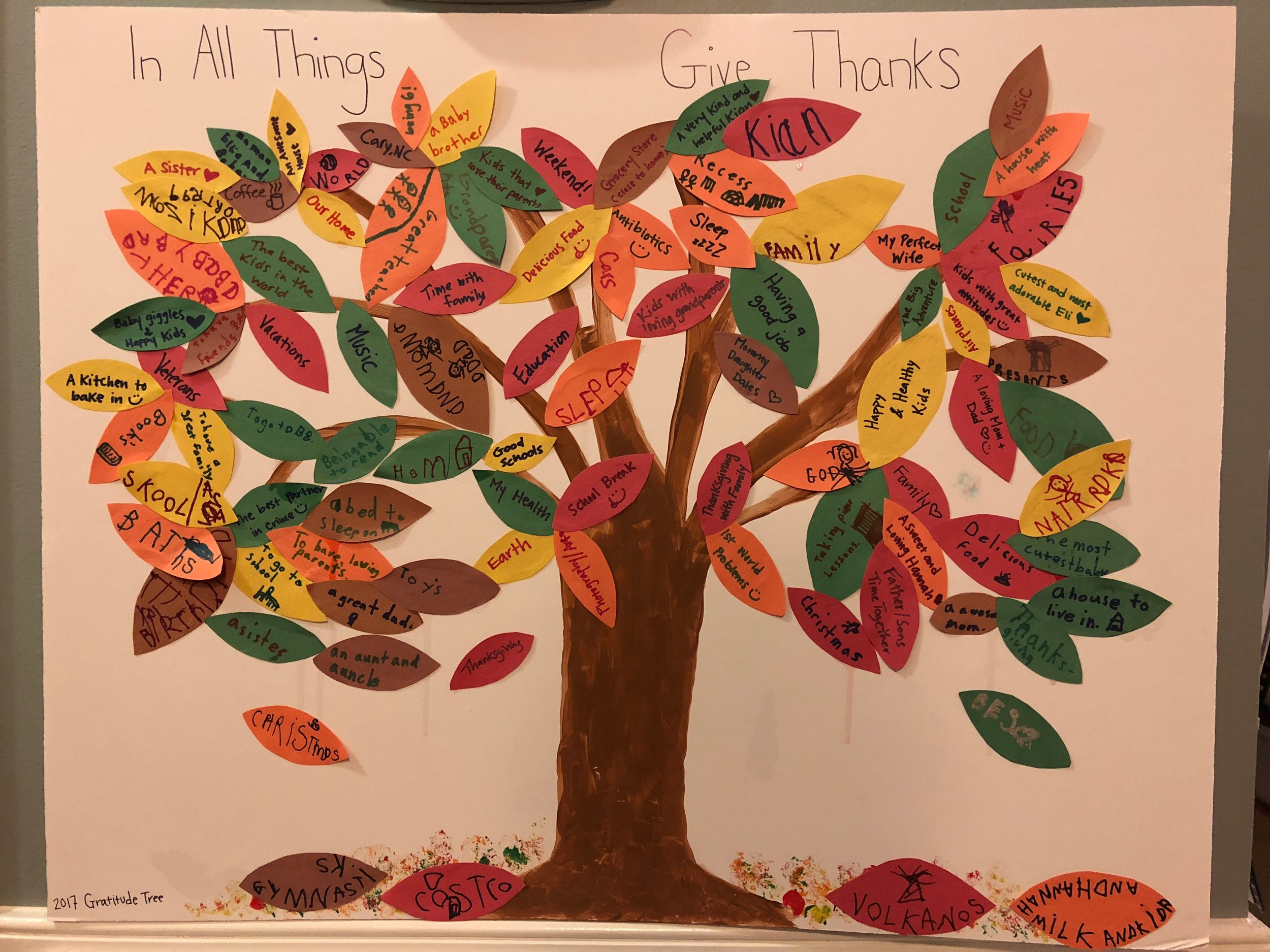 Gratitude Tree - 2017