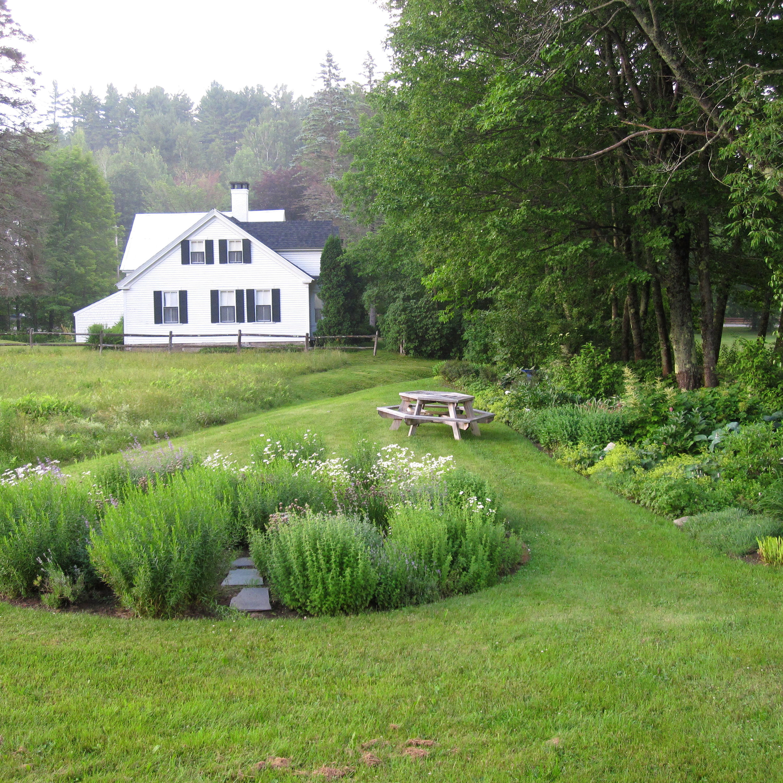 Meadow.jpg